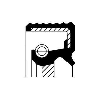 Wellendichtring, Kurbelwelle